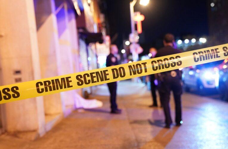 Scotland Yard advierte que crímenes pueden aumentar con el fin del confinamiento