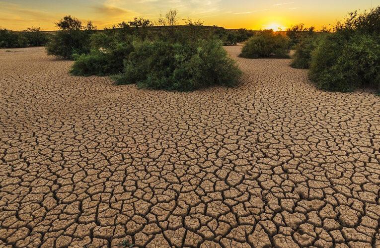 Brasil tiene la sequía más grave de los últimos años